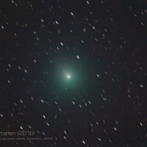 11/29撮影、ウィルタネン彗星
